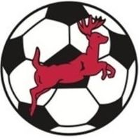 Red Deer City Soccer Association logo