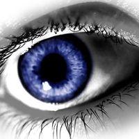 Lacombe Vision Centre logo