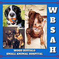 Wood Buffalo Small Animal Hospital logo