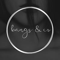 Bangs & Co Salon Ltd logo