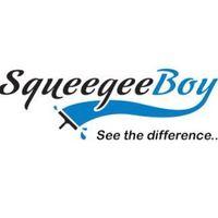 Squeegee Boy logo