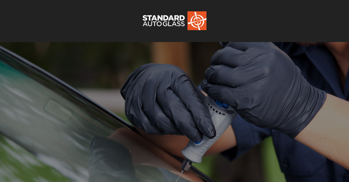 Standard AutoGlass logo