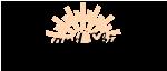Laser And Skincare MedSpa logo