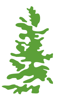 Exsile Outdoors logo