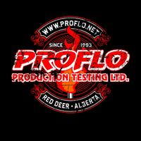 Proflo Production Testing Ltd logo