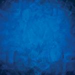 Blue Dragon Fine Thai & Khmer Cuisine logo